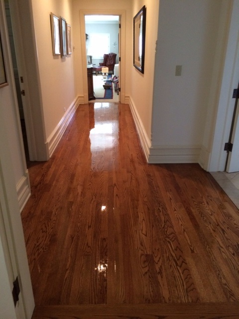 Emerald isle floor care cleaning carpet tile wood for Hardwood floors and more